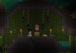 JungleSanctum