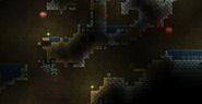 Gastropods underground