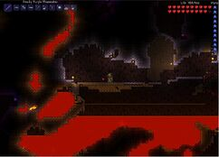 Terraria light-night farm