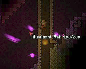 Illuminant Bat