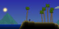 Oceano entorno