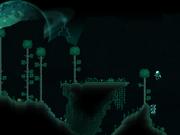 Vortex biome