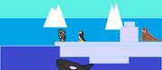 The Antarctic biom.