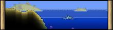 BiomeBannerOcean