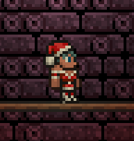 Ms clause outfit