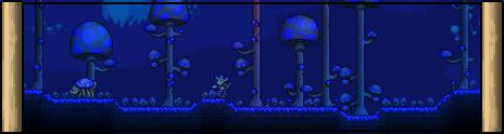 Биом грибы