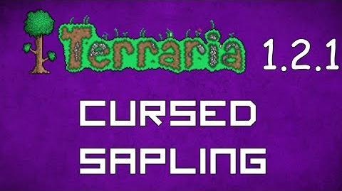 Cursed Sapling - Terraria 1.2