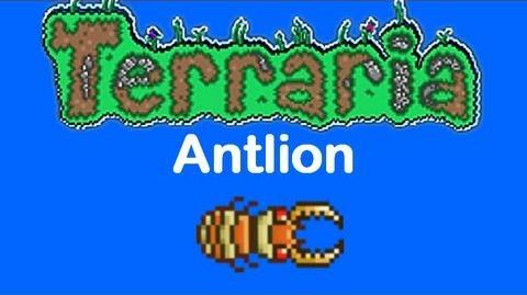 Terraria Antlion