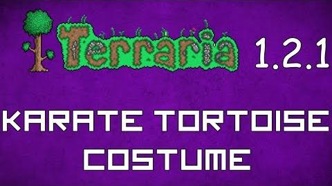Karate Tortoise Costume