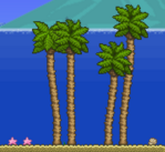 Palmeras en el océano