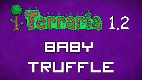 Baby Truffle - Terraria 1.2 Guide New Pet!