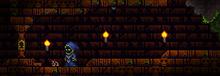 Templo de la selva entrada