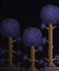 Деревья в искажении