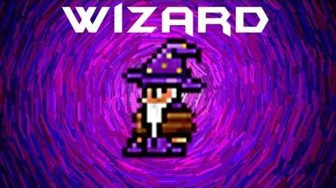Wizard NPC Terraria HERO
