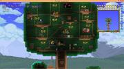 Casa arbolifera