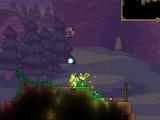 Cursed Bullet