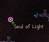 SoulLight