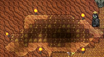 Desert Fossil