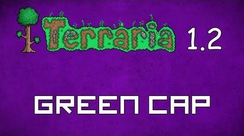 Green Cap - Terraria 1.2 Guide New Vanity Hat!