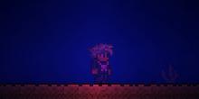 Collar de medusa efecto