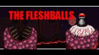 Terraria Fan Ideas The Fleshballs!