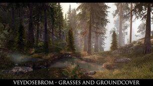 Skyrim SE Mods- Veydosebrom - Grasses and Groundcover