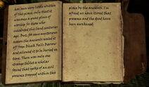 Skyrim Helgen Reborn Archaeologist's journal(5)