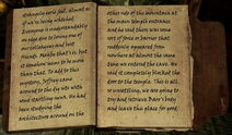 Skyrim Helgen Reborn Archaeologist's journal(3)