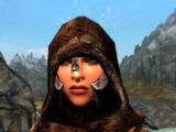 Armored Fur Hoods (Immersive Armors)