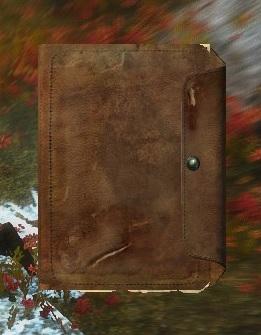 Book of Bandits | The Elder Scrolls Mods Wiki | FANDOM