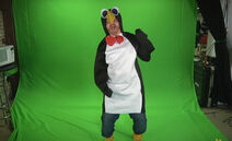 Pengwill