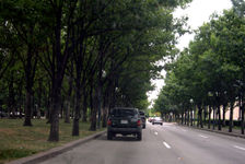 File:Haskell Ave.jpg