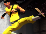 KungFu Scout