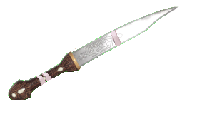 The Spell Knife