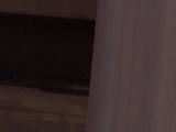 Bluster Blaster Sentry