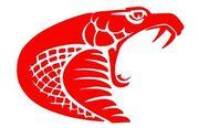 Coil-logo