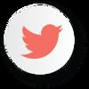 Social - Twitter