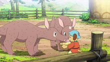 Chipo feeding donkey