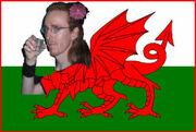 WelshyLogo