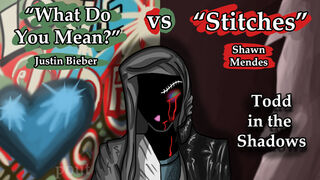What Do You Mean vs Stitches by krin