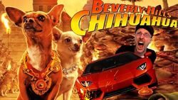 Beverly hills chihuahua nc