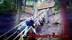 Jacob's ladder phelous