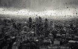 Turesta rain