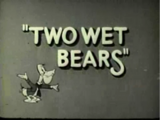 Two Wet Bears