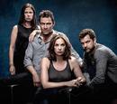 The Affair (TV Series) Wiki