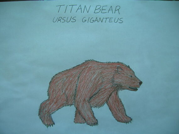 Titan Bear