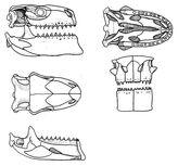 I-cfe848fbed42c1062a537037065ca9d6-T-Ford-Zilla-skull-Nov-2010