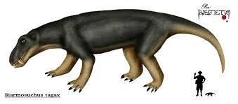 File:Biarmosuchus.jpg