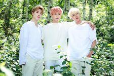 Jimin, Jungkook and Jin 2019 Season Greeting Sketch