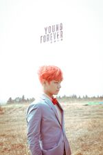 V Young Forever Wallpaper